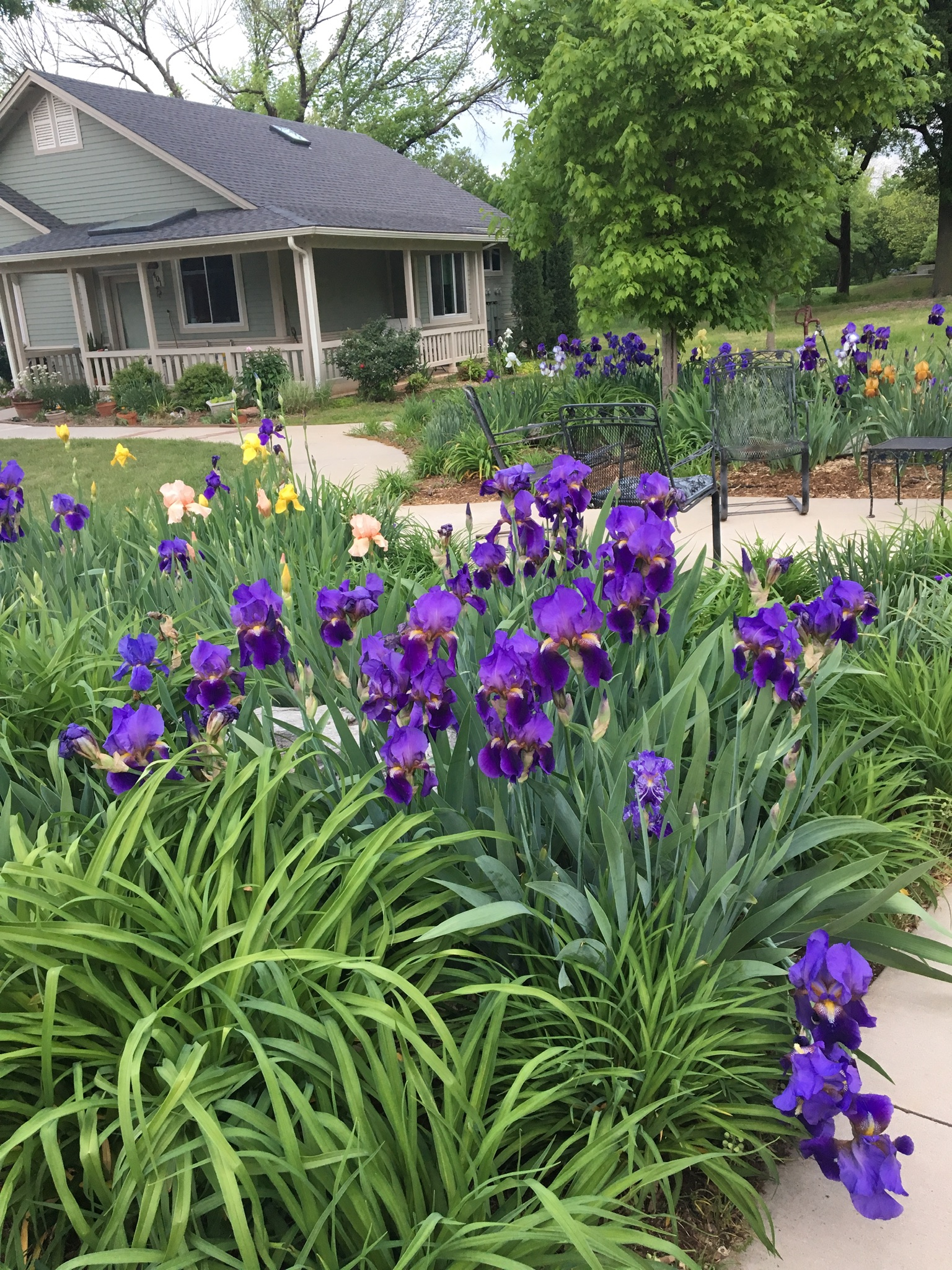 Spring at Oakcreek