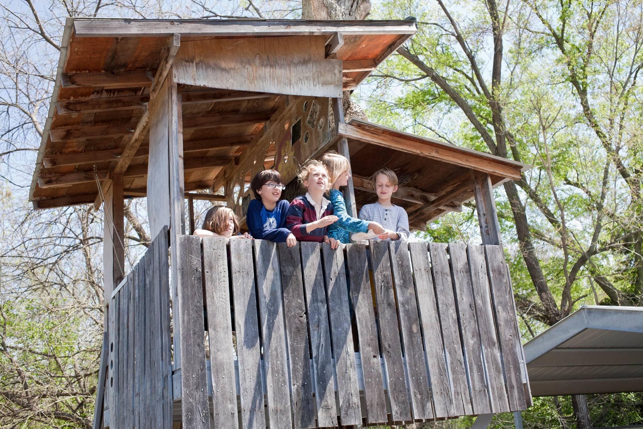 Neighborhood kids in the tree house
