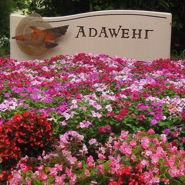 Welcome to Adawehi!